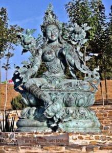Devi Awake