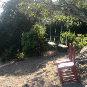 Empty Swings and Chairs
