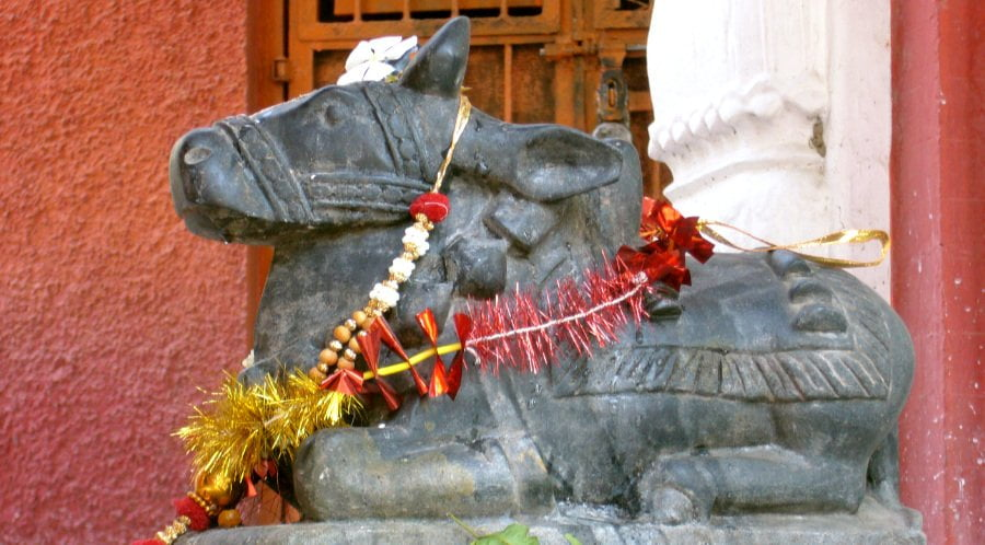 Nandi Statue Following Goodness