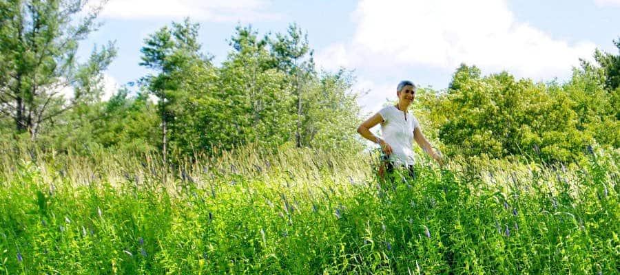 Relaxing in a Field of Flowers